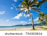 single coconut palm tree on the ... | Shutterstock . vector #754303816