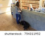 veterinary reception desk | Shutterstock . vector #754311952