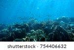 coral reef. diving. underwater... | Shutterstock . vector #754406632