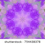 beautiful lilac unique... | Shutterstock . vector #754438378