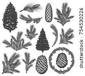 vintage coniferous tree... | Shutterstock .eps vector #754530226