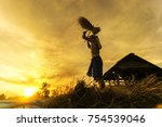 farmer threshing rice farmer... | Shutterstock . vector #754539046