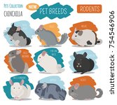 chinchilla breeds icon set flat ... | Shutterstock .eps vector #754546906