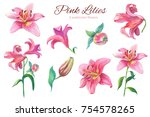 Pink Lilies.floral Set...