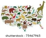 animals of america | Shutterstock .eps vector #75467965