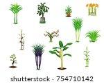 isolated kind of vegetable... | Shutterstock .eps vector #754710142