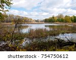landscape of marshes and... | Shutterstock . vector #754750612