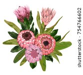 bouquet with protea flowers ... | Shutterstock .eps vector #754766602