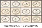 celtic knot braided oval frame...   Shutterstock .eps vector #754780495