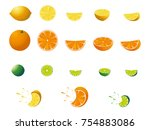 fresh citrus fruits. vector... | Shutterstock .eps vector #754883086