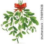 omela  holly  mistletoe bunch...   Shutterstock .eps vector #754895638