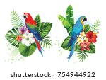 tropical summer arrangements... | Shutterstock .eps vector #754944922