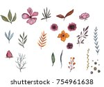 Hand Drawn Collection Of Plants ...