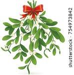omela  holly  mistletoe or... | Shutterstock .eps vector #754973842