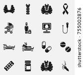 set of thyroid gland anatomy ... | Shutterstock .eps vector #755002876