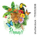 tropical summer arrangement...   Shutterstock .eps vector #755052838