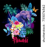 tropical summer arrangement... | Shutterstock .eps vector #755076562