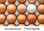 one white egg surrounded by... | Shutterstock . vector #755078698