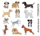 Stock vector dog vector cute cartoon puppy illustration home pets doggy different breed and poses bulldog hand 755080528
