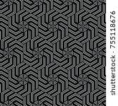 black and white vector pattern... | Shutterstock .eps vector #755118676