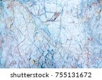 marble texture abstract... | Shutterstock . vector #755131672