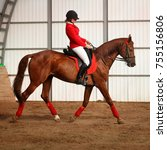 Small photo of A girl jockey rides a horse in gait in a covered arena. A pedigree horse for equestrian sport.