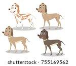dog vector image | Shutterstock .eps vector #755169562