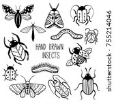set of hand drawn insects.... | Shutterstock .eps vector #755214046