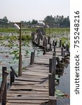 Small photo of Old wooden bridge across the lotus pond