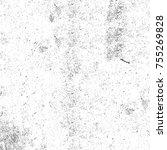black and white grunge... | Shutterstock . vector #755269828