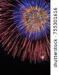 fireworks blooming in the...   Shutterstock . vector #755301616