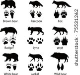 animals and its tracks. vector... | Shutterstock .eps vector #75531262