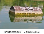 industrial barrel thrown into... | Shutterstock . vector #755380312