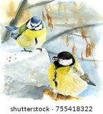 Watercolor Painting  Blue Tit...