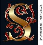 capital letter s. large letter. ... | Shutterstock .eps vector #755425126