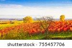 autumn landscape in the pfalz ... | Shutterstock . vector #755457706
