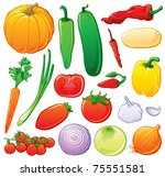 vegetable set with color... | Shutterstock .eps vector #75551581