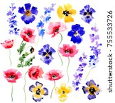 Hand Painted Watercolor Flower...