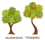 two trees with green leaves.... | Shutterstock .eps vector #75568402