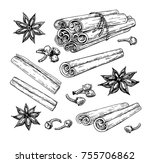 cinnamon stick tied bunch ... | Shutterstock . vector #755706862