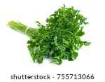 parsley bunch tied with ribbon...   Shutterstock . vector #755713066