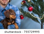 boy playing with dog near the... | Shutterstock . vector #755729995