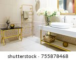 modern spacious bathroom with... | Shutterstock . vector #755878468