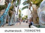 miami  fl   november 11th  2017 ... | Shutterstock . vector #755905795