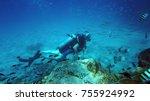 diver underwater. diving. water ... | Shutterstock . vector #755924992