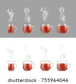 transparent tea cup with hot... | Shutterstock .eps vector #755964046