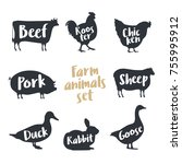 set of farm animals with sample ... | Shutterstock .eps vector #755995912