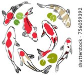 koi fish vector. red carp... | Shutterstock .eps vector #756059392