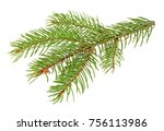 fir tree branch isolated on a... | Shutterstock . vector #756113986