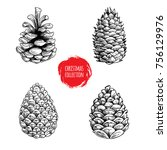 hand drawn sketch pine cones... | Shutterstock .eps vector #756129976